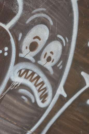 Miedoso (5)